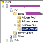 DHCP option tags for Wyse ThinOS   Scott Mattie's Blog
